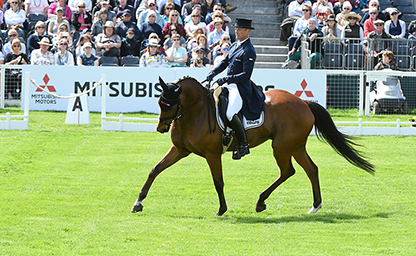 Michael Jung Badminton 2018 German Eventing